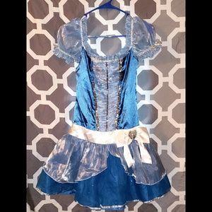 Cinderella Halloween Costume Dress, Juniors Small